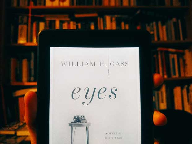 """Eyes"" by William H. Gass:  A Review"
